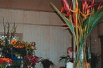 general-store-florist-interior